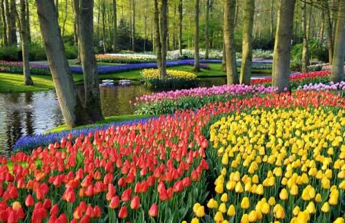 gorgeous-garden-europe-1